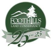 25 in 25 Logo4