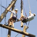 ropes-02-sq-200 3